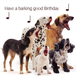 Pet Pawtrait Birthday Card - Dog Song