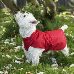 Westie RainCoat  By Cosipet