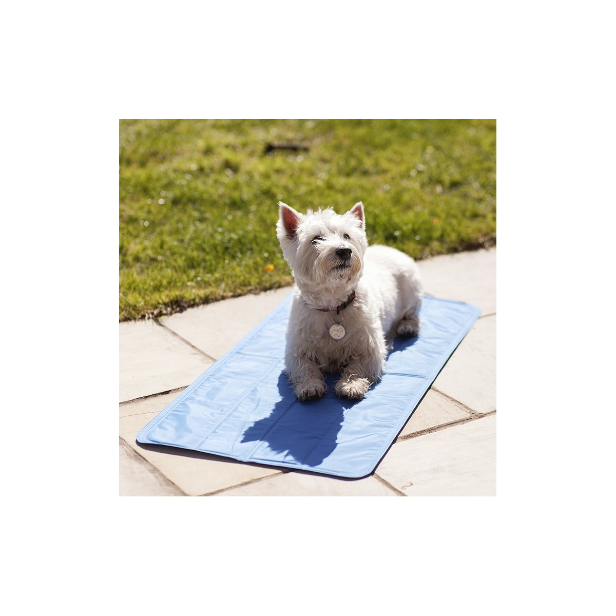 doormat product and flowers fur uncommongoods mat dog doggy welcome pet thumbnail