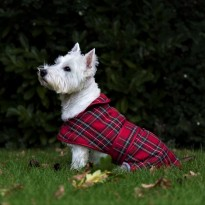 MUDDYPAWS Highland Tartan Dog Coat