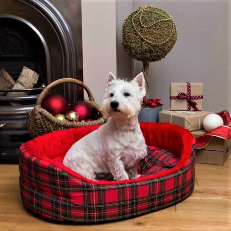 Next Day Dog Beds