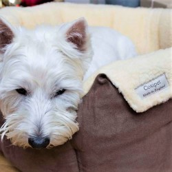 Brown Chelsea Slumbernest Dog Bed