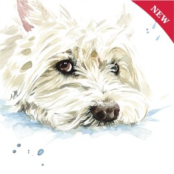 Westie Puppy Dog Eyes Greetings Card - West Highland White Terrier