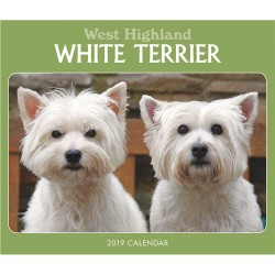 2019 Westie Boxed Desk Top Calendar