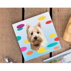 Westie Magnetic Notebook