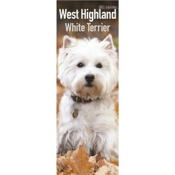 2021 West Highland White Terrier Slim Calendar