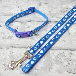 Puppy Collar and Lead Blue