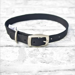 Black Buckle Westie Collar