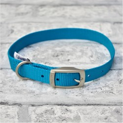 Blue Buckle Westie Collar