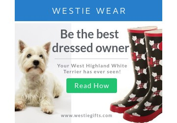 Westie Wear: Be the Best Dressed Owner Your West Highland Terrier Has Ever Seen