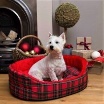 Westie Luxury Dog Beds